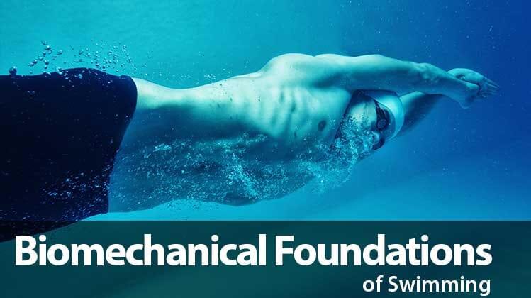 B101 Biomechanical Foundations spalsh