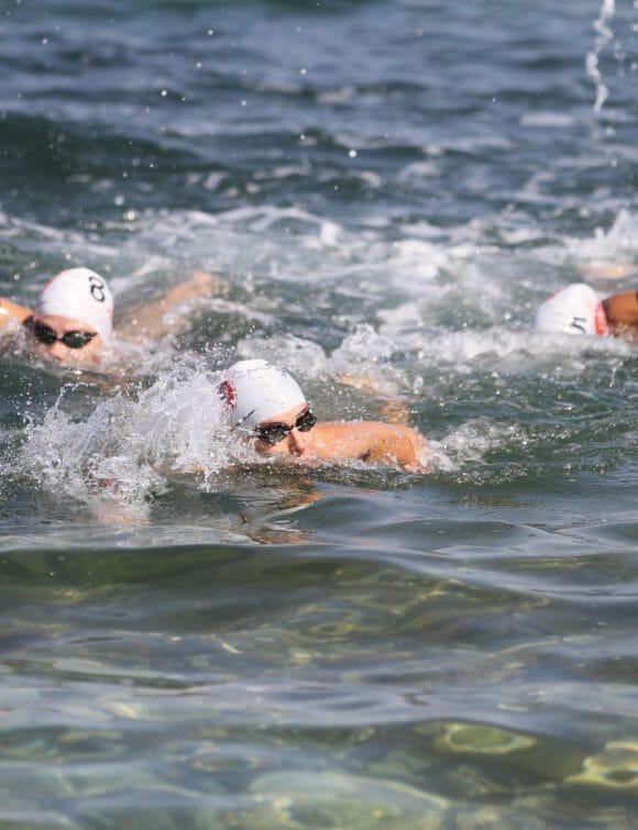Open-water-swimmers