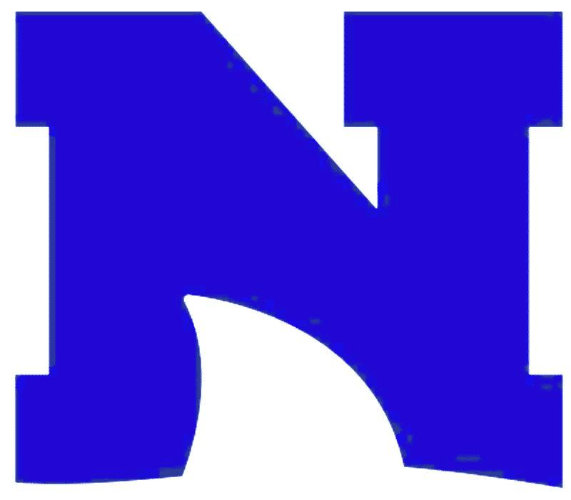 N - blue logo